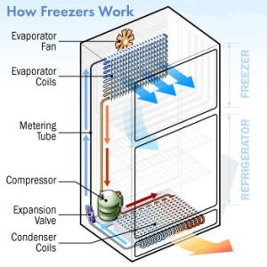 how freezes works 2015